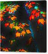 Early Autum Canvas Print