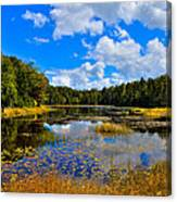 Early Autumn At Fly Pond - Old Forge New York Canvas Print