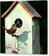 Early Bird Gets The Worm Canvas Print