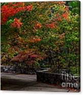 Early Fall At Talimena Park Canvas Print