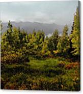 Early Fall On Kebler Pass Canvas Print
