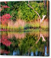 Early Fall Reflection Canvas Print