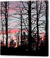 Early Fall Sky Vi Canvas Print