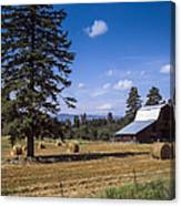 Early Harvest Canvas Print