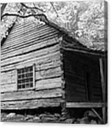Early Homestead -3 Canvas Print