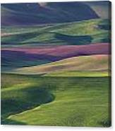Early Light In The Palouse Canvas Print