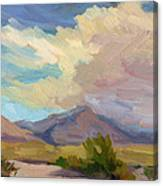 Early Morning At Thousand Palms Canvas Print
