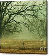 Early Morning Fog 019 Canvas Print