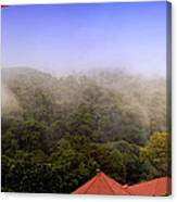 Early Morning Mist Over The Rain Forest Canvas Print