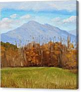 Early November At First Bridge Canvas Print