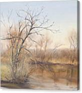 Early Spring  Awakes Canvas Print