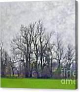 Early Spring Landscape  Digital Paint Canvas Print