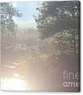 Early Sunny Morning Canvas Print