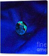 Earth Alone Canvas Print