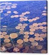 Earth Circles Canvas Print