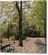 Earth Day Special - Bench In The Park Canvas Print