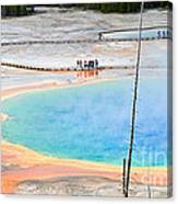 Earth Rainbow - Overhead View Of Grand Prismatic Spring In Yellowstone National Park.  Canvas Print
