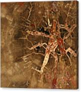 Earth Stone Canvas Print