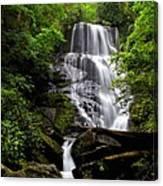 Eastatoe Falls II Canvas Print