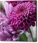 Easter Bouquet Flowers Mums And Dahlia Canvas Print