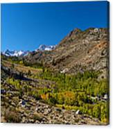 Eastern Sierras 11 Canvas Print