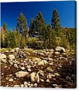 Eastern Sierras 21 Canvas Print