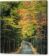 Echo Lake Road Canvas Print
