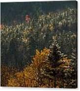 Edge Of Light Canvas Print