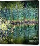 Edge Of Reflections Canvas Print