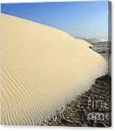 Edge Of The Dune Brazil Canvas Print