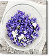 Edible Violets  Canvas Print