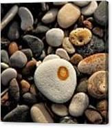 Egg Pebble Canvas Print