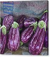 Eggplants Canvas Print