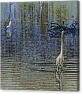 Egret And Heron Watching Canvas Print