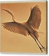Egret Sepia Canvas Print