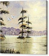 Egrets Over Wakulla Springs Canvas Print