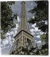 Eiffel Through Trees Canvas Print