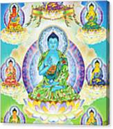 Eight Brothers Of The Medicine Buddha Canvas Print