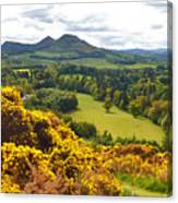 Eildon Hill - Three Peaks And A Valley Canvas Print