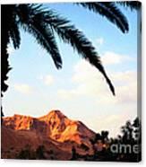 Ein Gedi Oasis Israel Canvas Print