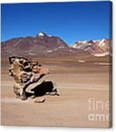 El Arbol De Piedra Bolivia Canvas Print
