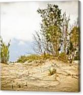 Elafonisi Nature Canvas Print
