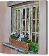 Elayne Look Through The Window Canvas Print