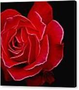 Electric Rose Canvas Print
