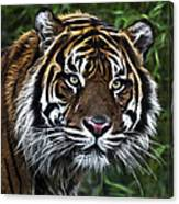 Electric Tiger Canvas Print