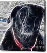 Electrostatic Black Lab Canvas Print