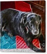 Electrostatic Dog And Blanket Canvas Print