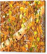 Elegant Autumn Branches Canvas Print
