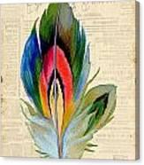 Elegant Feather-b Canvas Print