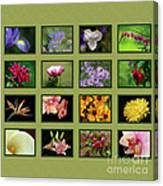 Elegant Flowers Collection Canvas Print
